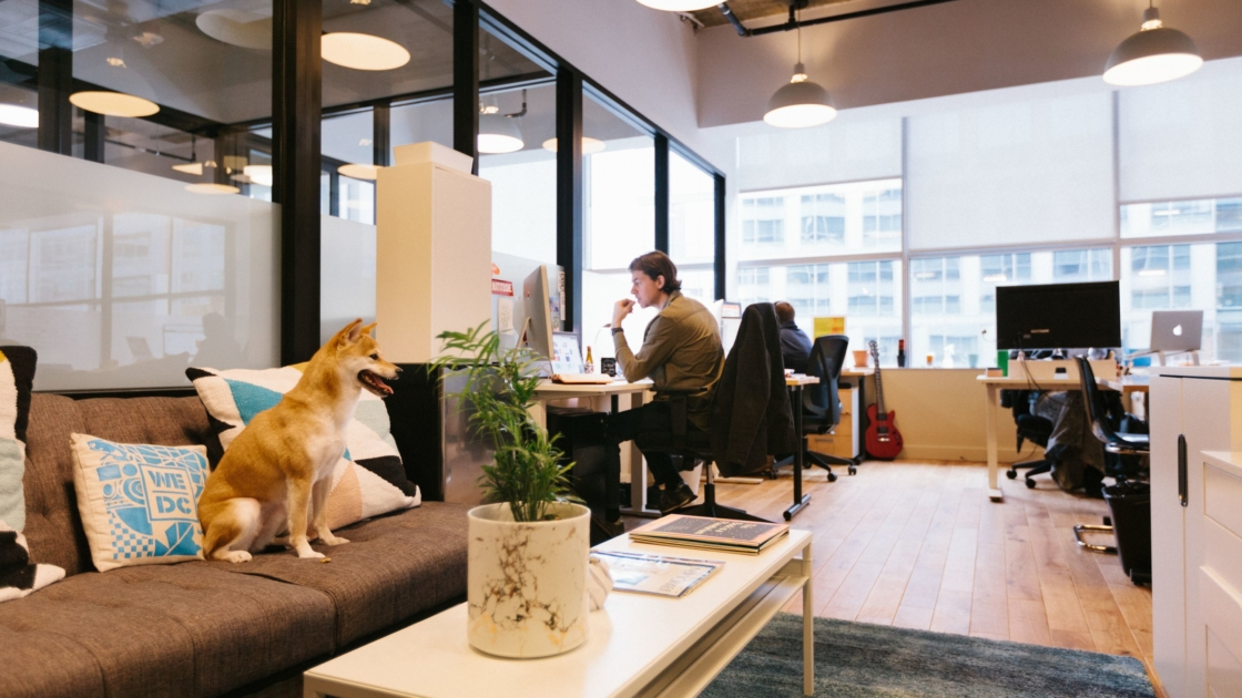 Best locations for office headquarters in Johannesburg | WeWork