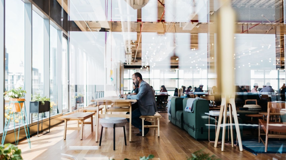 WeWork Varsovia in Mexico City, Mexico. Photographs by The We Company