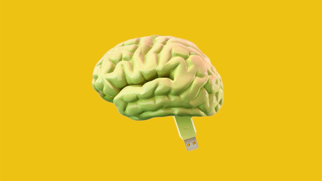 Brain With Usb Flash Drive
